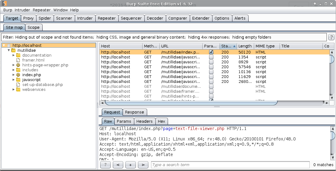 Introduction to Burp Suite - Core dump overflow